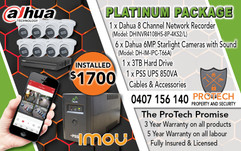 Platinum Package Flyer.jpg