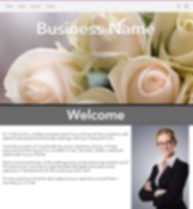 Website sample.JPG