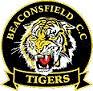 Beaconsfield Tigers.jpg