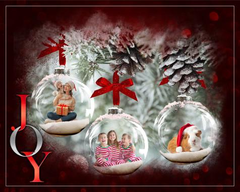 Joy Christmas.jpg
