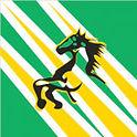 Mooroolbark-Mustang-colours.jpg
