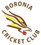 boroniacc-logo.jpg