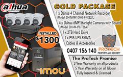 Gold Package Flyer.jpg