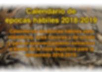 link de epocas habiles editado.jpg