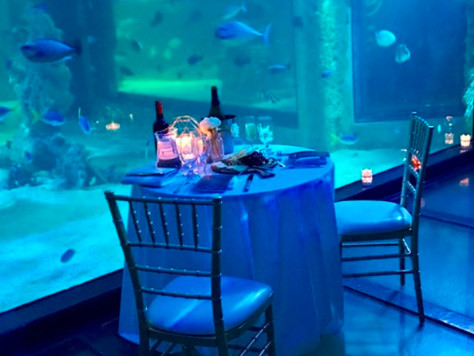 PRIVATE DINING SEA LIFE, SYDNEY AQUARIUM