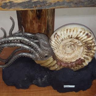 echter Ammonit , der Rest ist modelliert