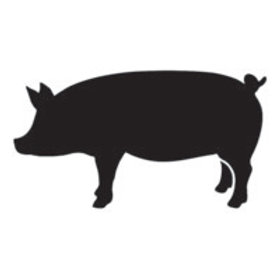 "pig stencil 10"" x 14"""