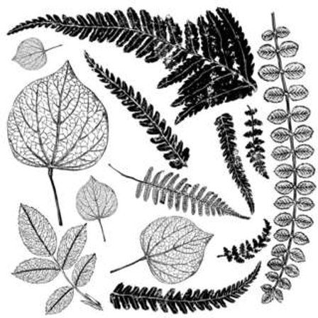 """FRONDS STAMP 12"""" X 12"""""""