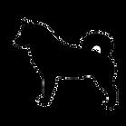 犬の影ヘッダー