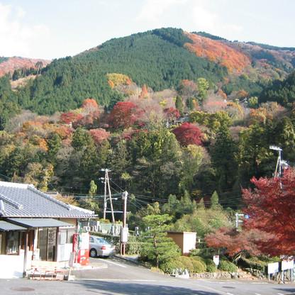 厳かな霊峰比叡山-秋の紅葉
