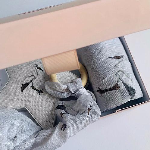 Newborn Gift Box