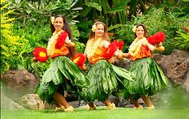 Capture hawaii.PNG