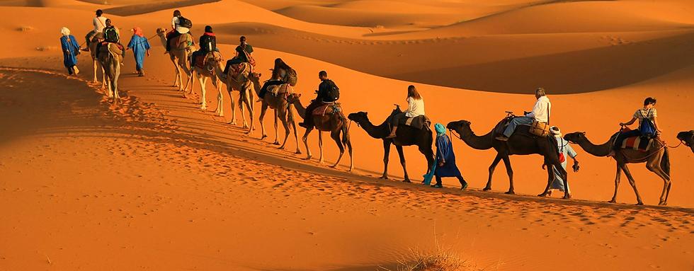 Morocco 4.PNG