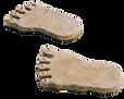 big_feet.png