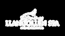 Llangollen Spa logo White.png