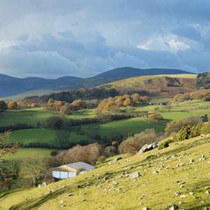 Llangollen Countryside