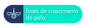 fases.png