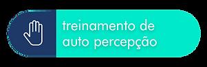 treinamento_de_auto_perceção.png