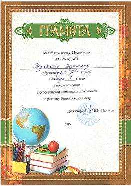 нургалина В. шк.олимпиада.jpg