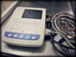 Fairport Animal Hospital  Electrocardiography (ECG)