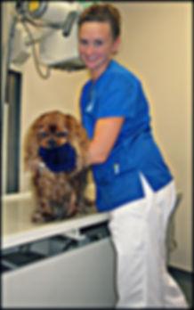 Natasha Talbot at Fairport Animal Hospital