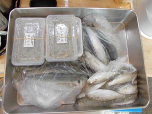 美味しい、新鮮鮮魚、待ってます。