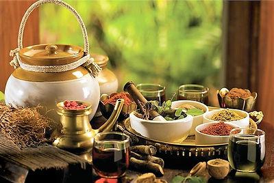 Ayurveda-santé-bienêtre-nutrition.jpeg