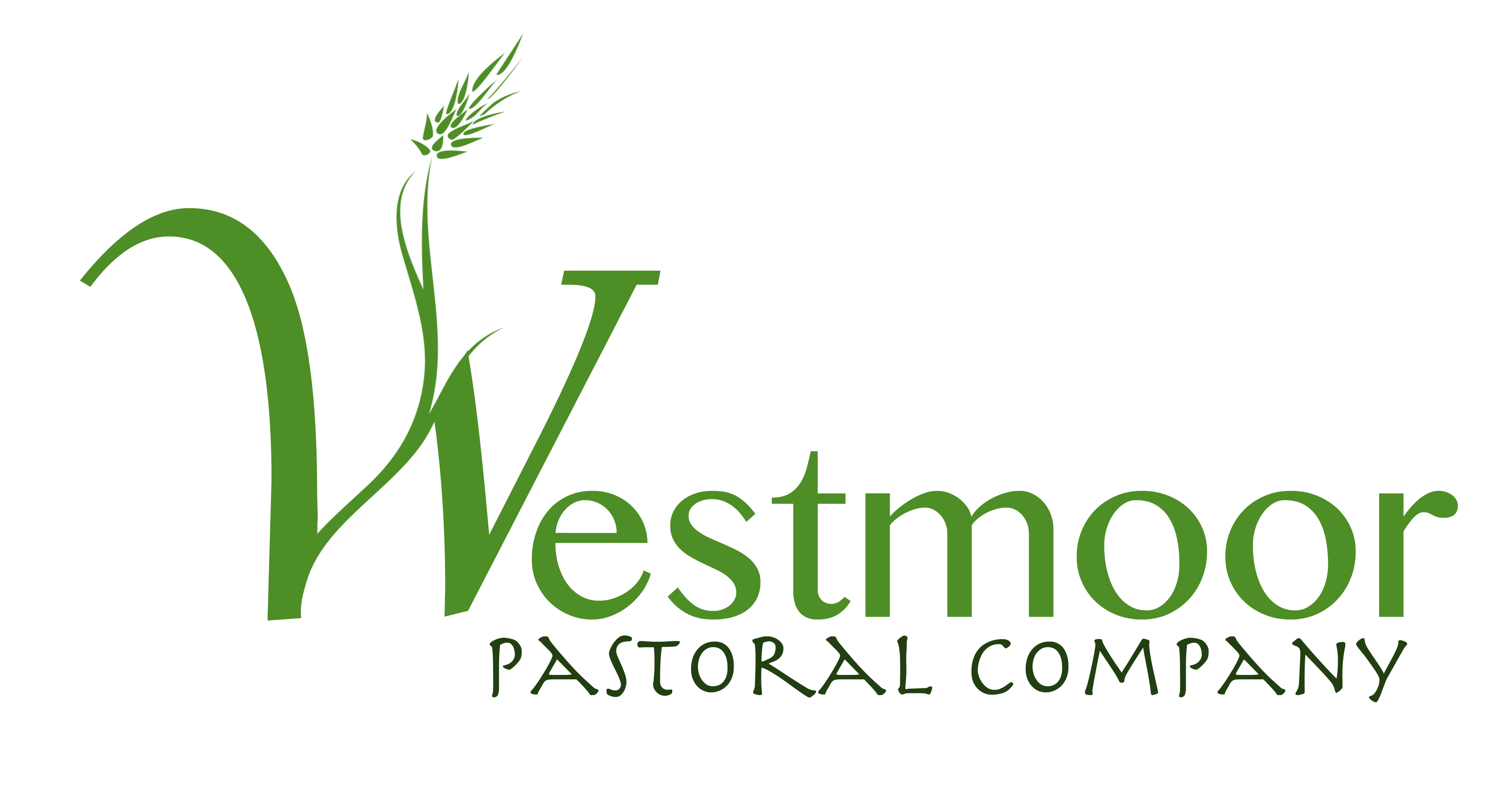 Westmoor Final