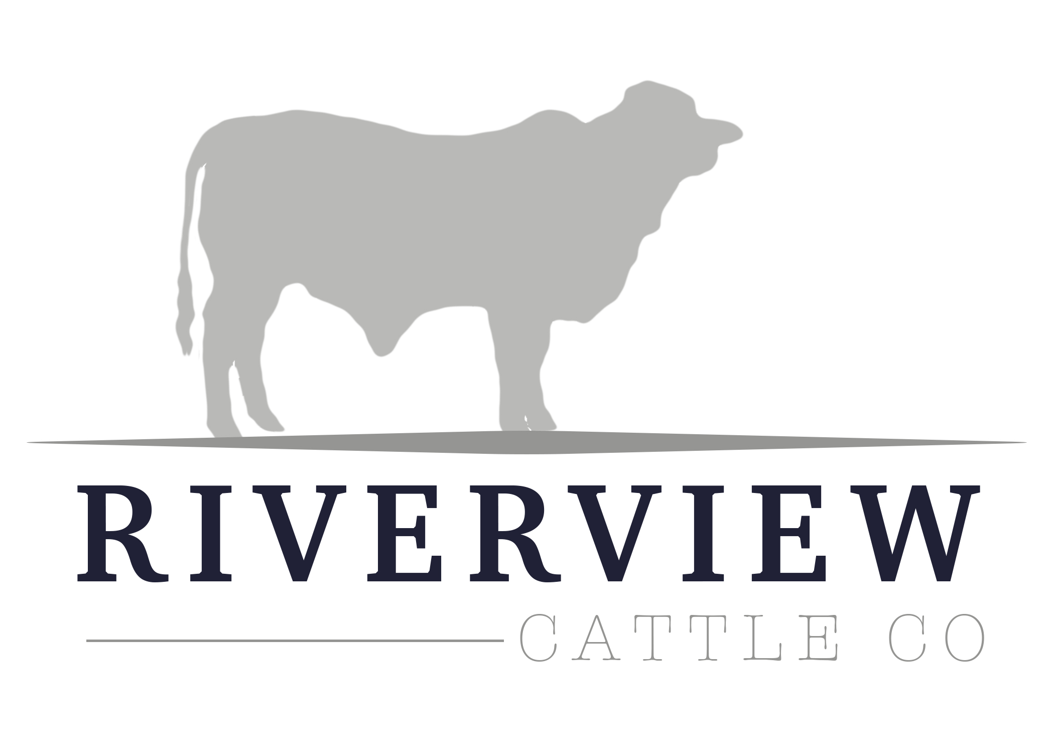 Riverview FINAL
