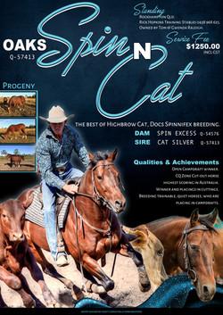 Oaks Spin n Cat Final