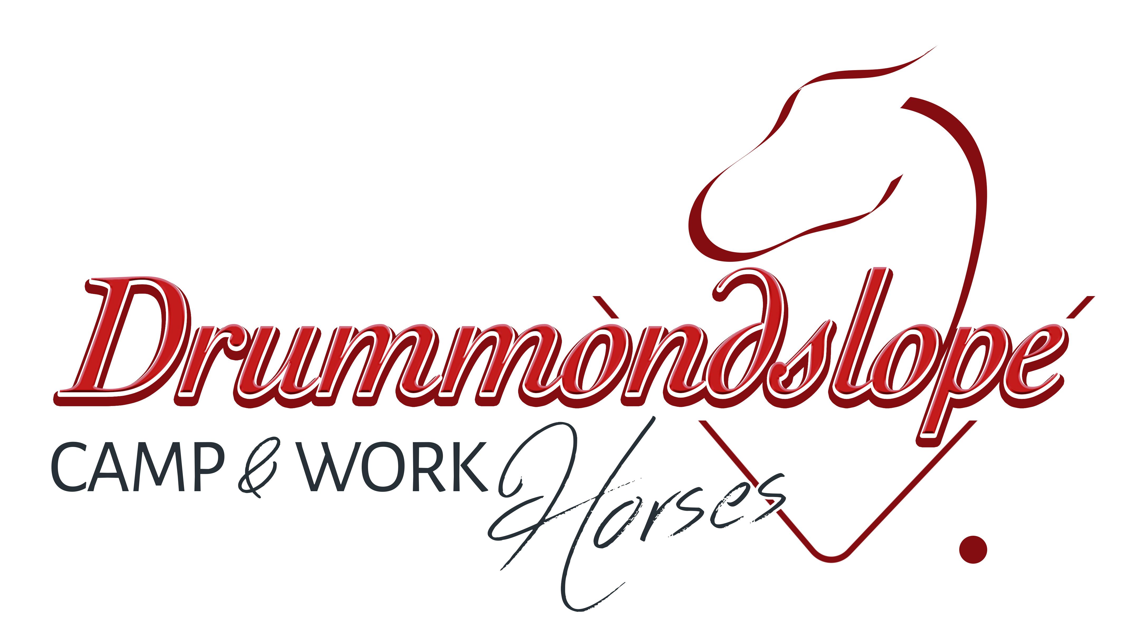 Drummondslope Logo