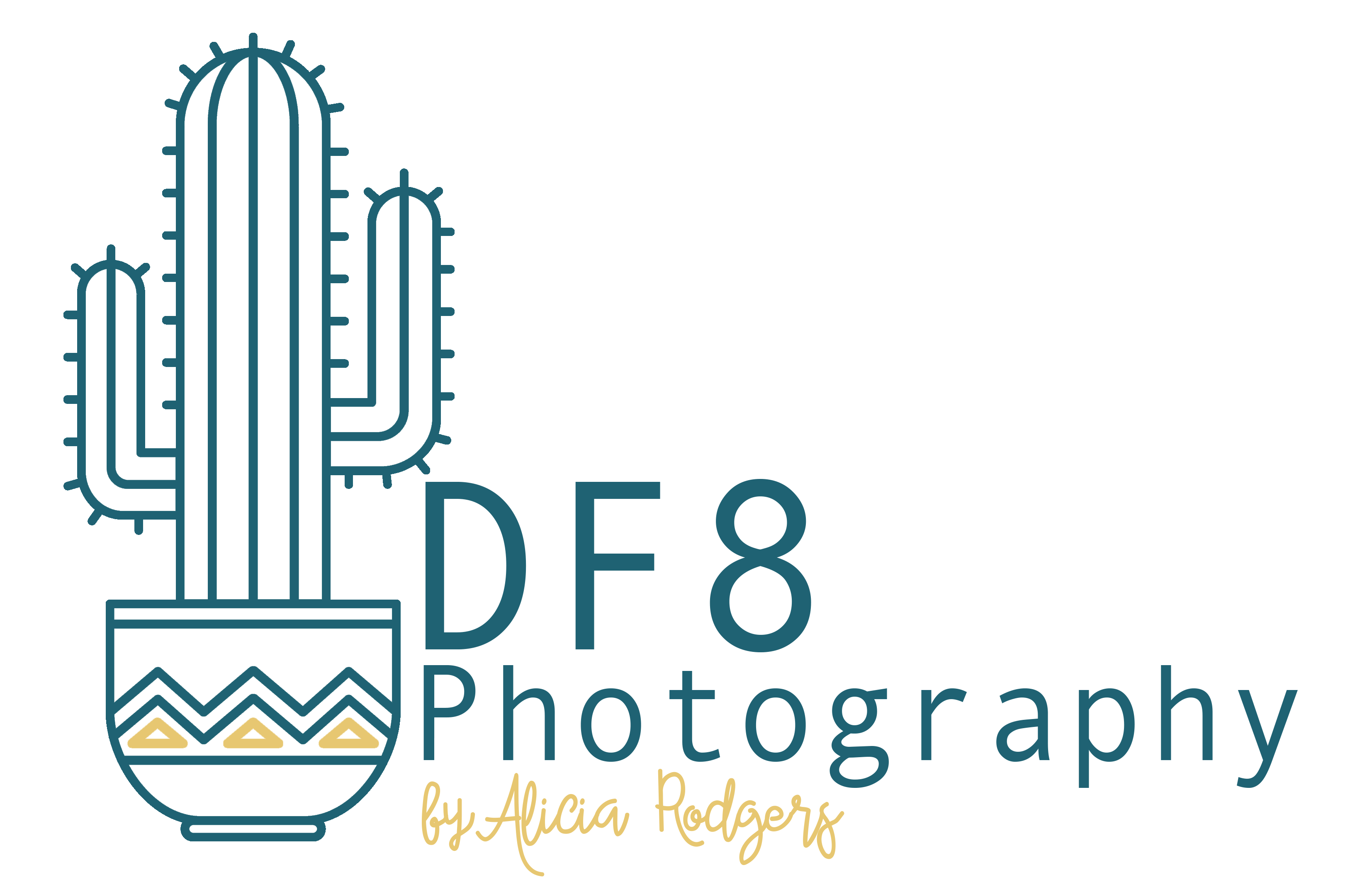 DF8 Photography