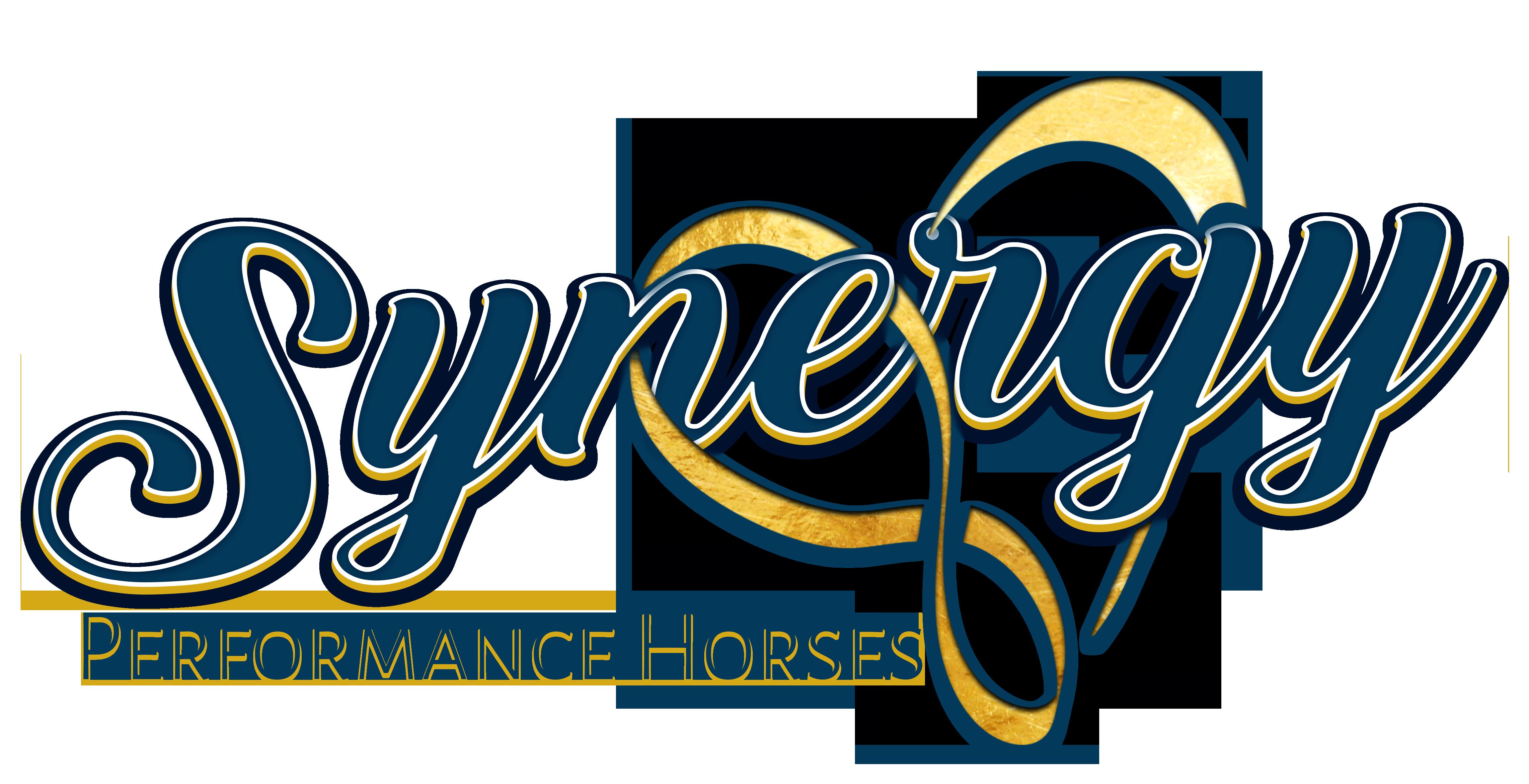 SynergyFinal