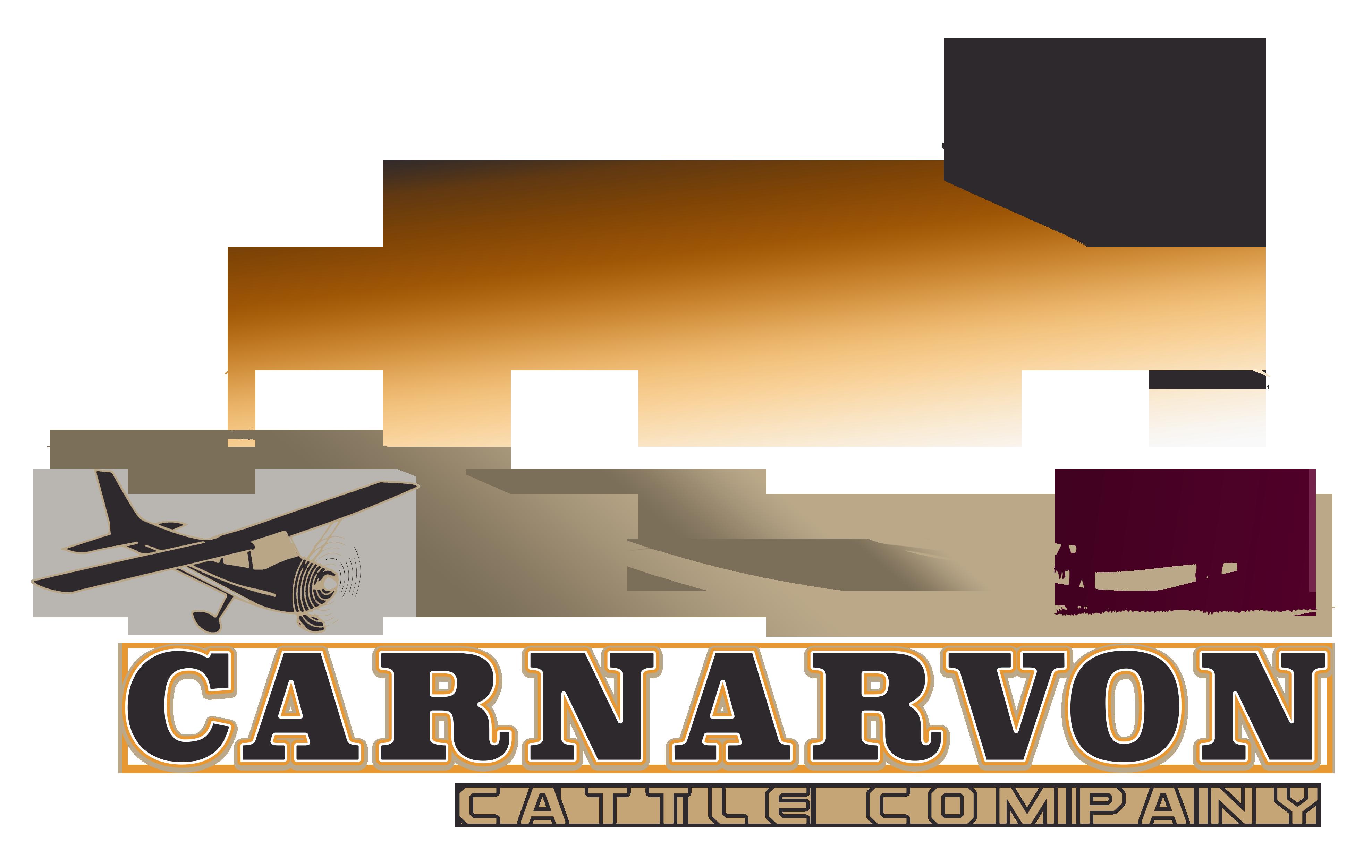 Carnarvon Cattle Final