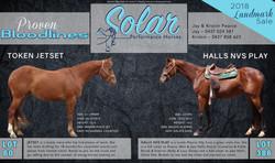 Solar Landmark Advert