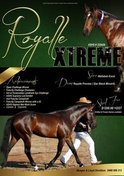 Royall Xtreme