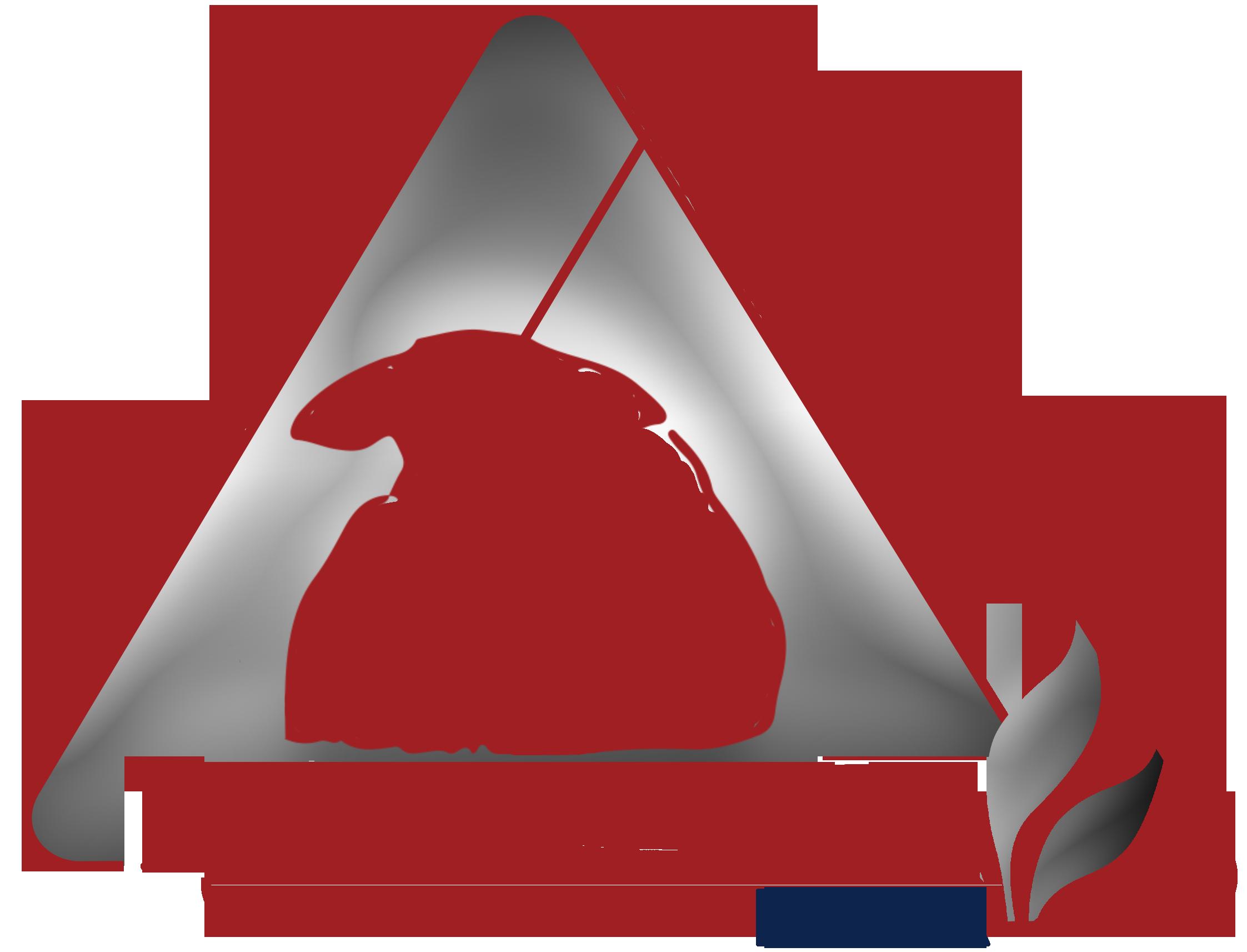 Heartland Basic FINAL