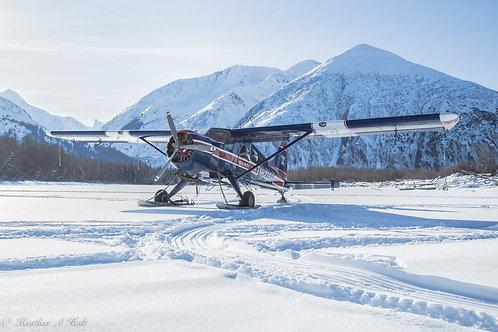 Ward Air Beaver on Skis