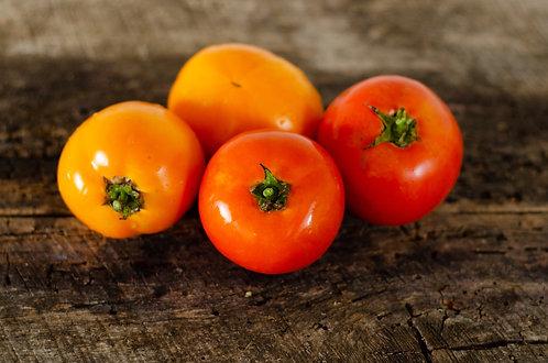 Tomatoes, Garden