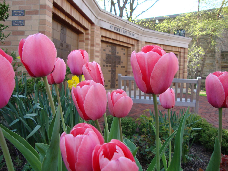 The Columbarium in Springtime