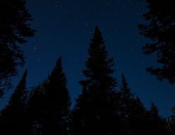 Stars in Minnesota
