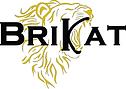 BriKat logo white.png