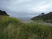 Mystique Bretagne bomen velden water (33