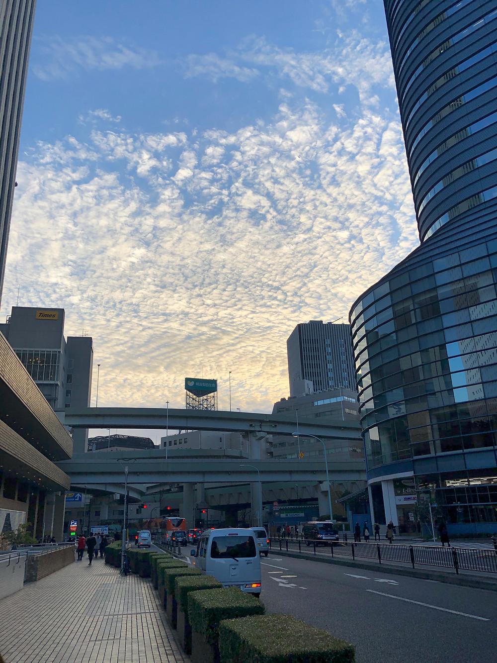 東京へ帰省した写真