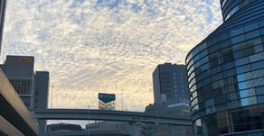 お正月は東京へ帰省していました!