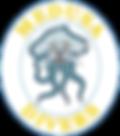 Medusa Divers_Logo_Corsi Sub_Corsi Istruttori Sub_SNSI_Brevetti_Internazionali