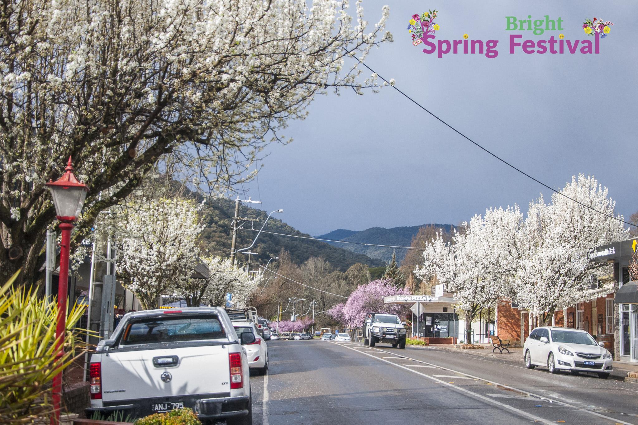 Brigh Spring Festival 1609 - 016