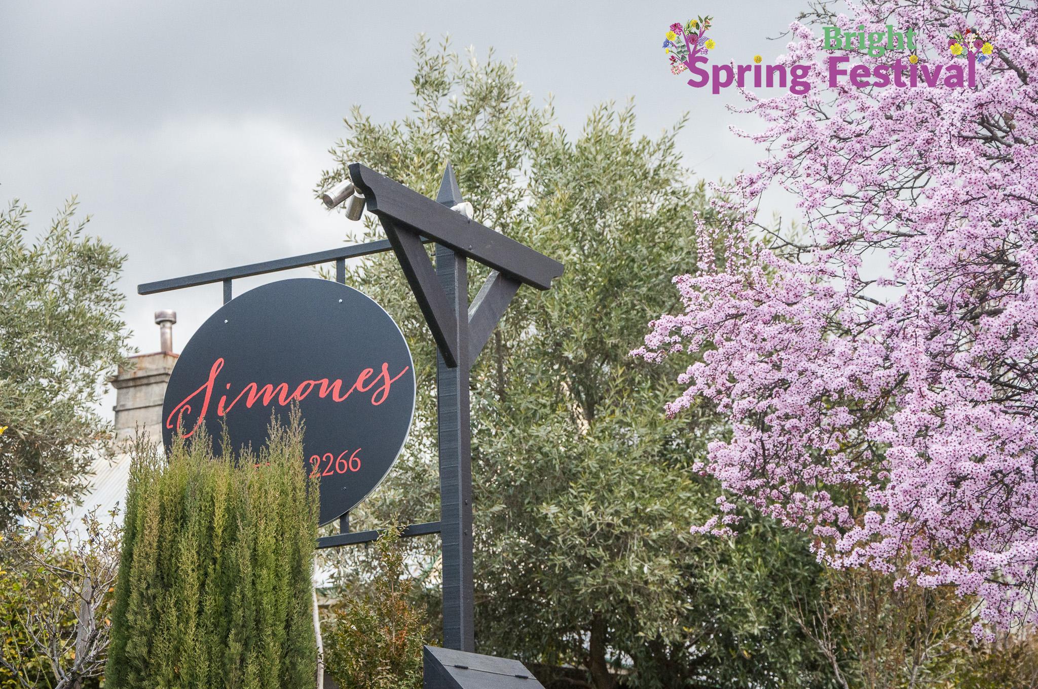 Brigh Spring Festival 1509 - 012