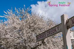 Brigh Spring Festival - 059