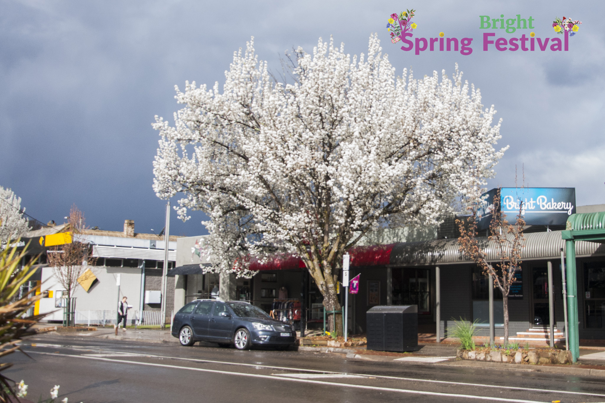 Brigh Spring Festival 1609 - 015